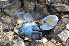 Garbage in the forest. royalty free stock images