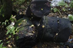 Garbage in the forest in green. Garbage in the forest in green Royalty Free Stock Photos