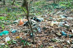 Garbage in the forest. Nature pollution. Royalty Free Stock Photography