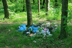 Garbage in the forest. A pile of garbage in the forest Royalty Free Stock Photo