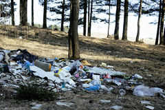 Garbage in forest, problems of environment Royalty Free Stock Image