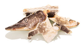 Garbage. Head and cleaning dried pike isolated on white Stock Images