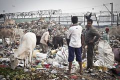 Garbage heap in india Stock Image