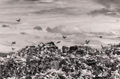 Garbage heap Royalty Free Stock Photography