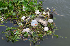 Garbage In The Chao Phraya River Royalty Free Stock Images
