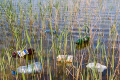 Garbage in the lake closeup Stock Photography