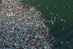 Garbage. In lake - Romania Royalty Free Stock Image
