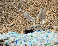 Garbage In Mountain.(Ladakh). Stock Images