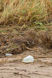 Garbage by the Ocean Stock Photography