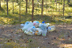 Garbage in pine tree forest. Stock Images