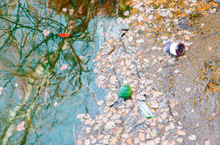 Garbage and plastic bottles at the lake edge Royalty Free Stock Images
