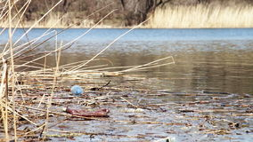 Garbage, Plastic Bottles in the River stock video footage