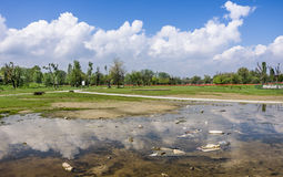 Garbage Polluting the natural Environment. Wide panorama view of a polluted area in Rimini, Italy Royalty Free Stock Photos