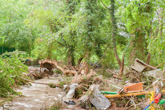 Garbage on river in green forest. Royalty Free Stock Images