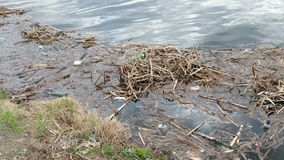 Garbage by the river. Pollution, ecology and environment protection concept stock video