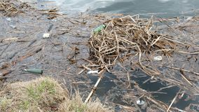 Garbage by the river. Pollution, ecology and environment protection concept stock video footage