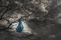 Environment pollution problem concept. plastic bag hanging on a branch stock photo