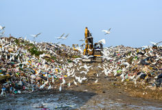 Garbage ,Trucks, work, on , landfill Stock Photos