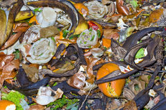 Garbage vegetable Royalty Free Stock Photography
