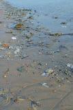 Garbage. Waste at sea to managed Royalty Free Stock Image
