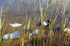 Garbage in the water Royalty Free Stock Images