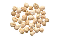 Garbanzo beans Stock Images