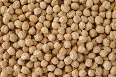 Garbanzo beans background Stock Photos