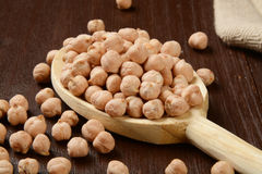 Garbanzo beans Royalty Free Stock Images