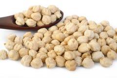 Garbanzo beans seed on white Stock Photos