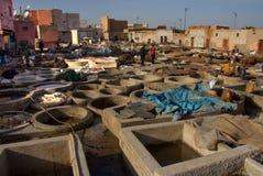 Garbarnia w Marrakesh Fotografia Royalty Free