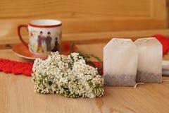 Garbe, Blume der Schafgarbe (Achilea-millefolium) Stockbilder