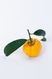 Garcinia amarillo Foto de archivo libre de regalías
