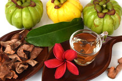 Garcinia atroviridis fruit, dried and fresh and dried brew the tea to lose weight. Royalty Free Stock Photography