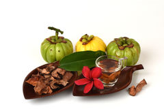 Garcinia atroviridis fruit, dried and fresh and dried brew the tea to lose weight. Royalty Free Stock Images