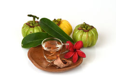 Garcinia atroviridis fruit, dried and fresh and dried brew the tea to lose weight. Stock Image