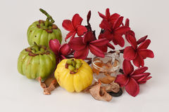 Garcinia atroviridis fruit, dried and fresh and dried brew the tea to lose weight. Stock Photos