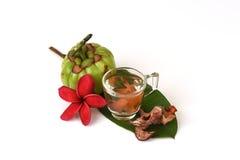 Garcinia atroviridis fruit. Stock Photography