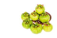 Garcinia cambogia fresh fruit, isolated on white. Fruit for diet. Garcinia cambogia fresh fruit on wood basket, isolated on white. Garcinia atroviridis is a Royalty Free Stock Image