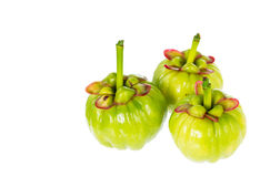 Garcinia cambogia fresh fruit on white background. Fruit for die. Closeup garcinia cambogia fresh fruit on white background. Garcinia atroviridis is a spice Royalty Free Stock Image