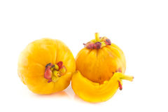 Garcinia Cambogia isolated on white background Royalty Free Stock Photos