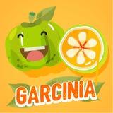 Garcinia mit Briefgestaltung - Vektor Stockfoto