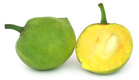 Garcinia tinctoria or edible Daophal of Bangladesh Royalty Free Stock Photo