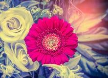 Gard com o gerbera vermelho com as rosas no grupo bonito das flores, vista superior Imagens de Stock