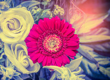 Gard with red gerbera with roses in beautiful flowers bunch, top view Stock Images