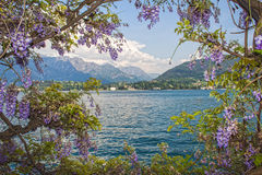 Garda湖 图库摄影