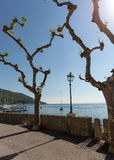 Garda lake with promenade in Torri del Benaco Royalty Free Stock Photos