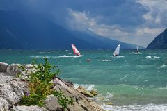 Garda lake on a windy day, surfers paradise riva del garda, ital. Y. swan family in the waves Stock Photography