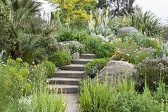 Gardden view - steps. English rock garden Royalty Free Stock Images
