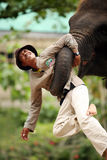 Garde d'éléphant image libre de droits