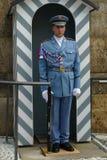 Garde d'honneur aux portes du château de Prague Photos libres de droits